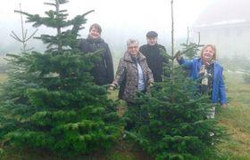 Den passenden Wunschbaum gefunden haben (von links): Tina Koller, Inge Winter, Sebastian Stang und Doris Frank. Foto: Stock